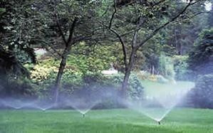 Categorie del manuale del giardiniere le nozioni base del for Impianto irrigazione interrato