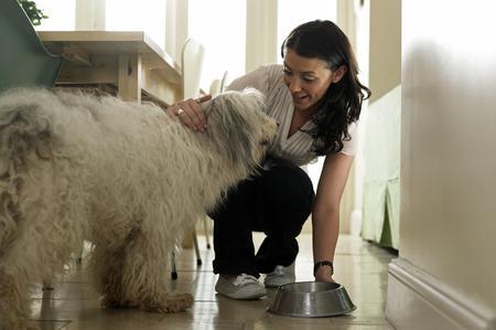 Alimentazione casalinga cosa dare da mangiare al cane